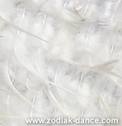 Полотно с перьями для пошива в Салоне Зодиак