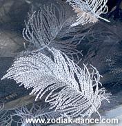 ткани для танцев в Салоне Зодиак