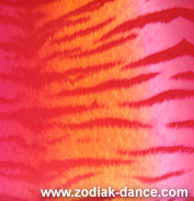 Лайкра с рисунком Тигр